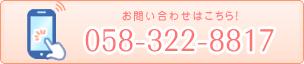 0583228817